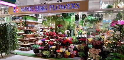 Ming Sing Flowers